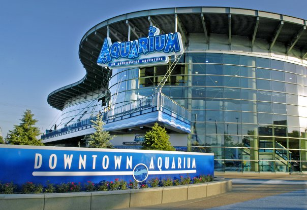 Downtown Aquarium(ダウンタウン水族館)