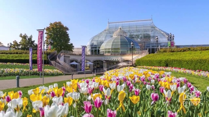 Phipps Conservatory and Botanical Gardens(フィップス温室植物園)