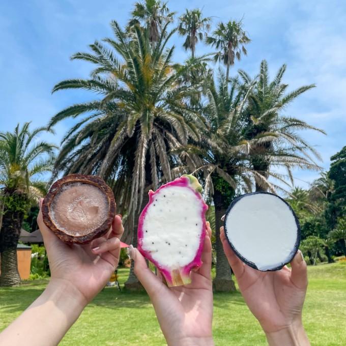 アジアンガーデンのココナッツアイス