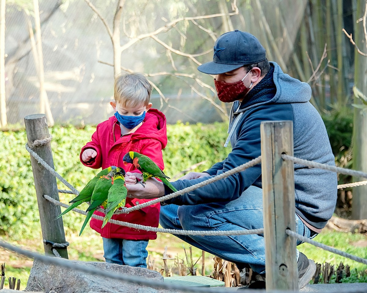 Riverbanks Zoo & Garden(リバーバンクス動植物園)