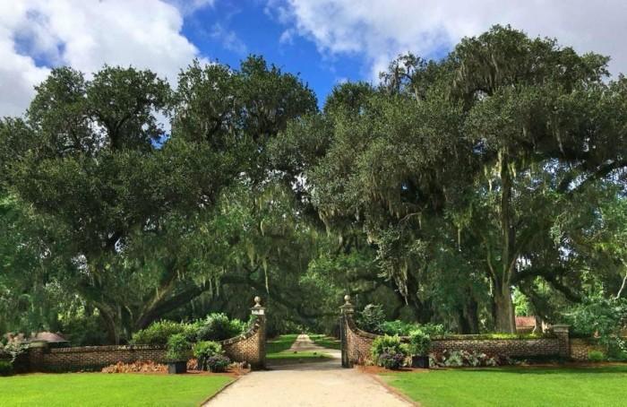 Boone Hall Plantation & Gardens(ブーン・ホール・プランテーション & ガーデンズ)