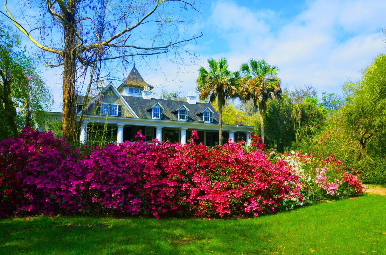 Magnolia Plantation and Gardens(マグノリア・プランテーション・アンド・ガーデンズ)